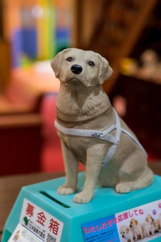 元湯龍泉閣は「日本盲導犬協会」の活動を応援しています。